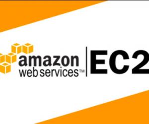 Amazon EC2 là gì? Hướng dẫn tạo máy ảo Amazon EC2 trên AWS