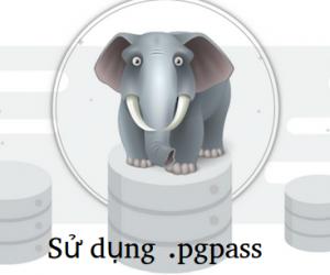 Sử dụng file pgpass để lưu trữ mật khẩu của PostgreSQL