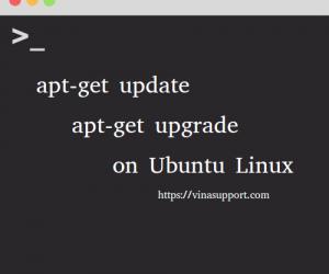 Cách update và upgrade riêng 1 package trên Ubuntu
