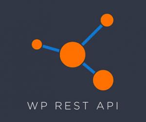 WordPress REST API là gì? Hướng dẫn sử dụng WordPress REST API