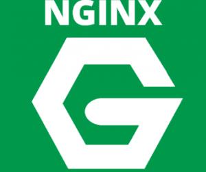 Nginx là gì? Cài đặt và cấu hình Nginx Web Server