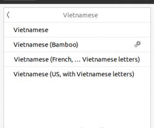 Cài đặt bộ gõ tiếng Việt IBus-Bamboo trên Ubuntu 20.04 LTS
