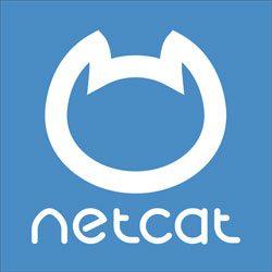 Tạo 1 port listener trên Linux sử dụng Netcat