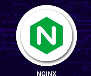 Hướng dẫn cấu hình file config Nginx cho WordPress