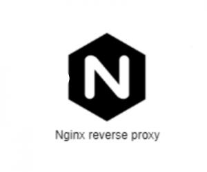 Cấu hình Reverse Proxy (proxy_pass) trên Nginx