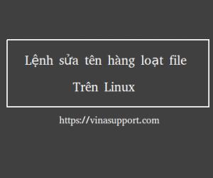Hướng dẫn sửa tên hàng loạt file trên Linux
